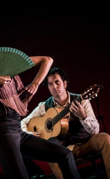 Flamenco frente a la Giralda